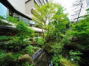 中庭の日本庭園 季節を感じて 心和む日本の風景を