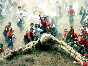 ■御柱祭 木落としの一場面 諏訪の男の心意気が試される(諏訪観光連盟提供)