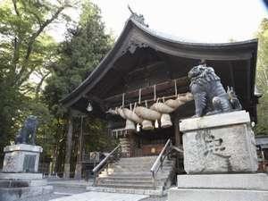 全国に広がる諏訪神社の総本山諏訪大社。最近では日本屈指のパワースポットとしても人気があります。