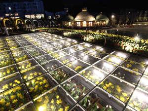 公立学校共済組合蒲郡保養所  蒲郡荘:【ラグーナテンボス】夜はライトアップ★季節の花を楽しめるフラワーラグーン♪