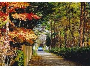紅葉を迎えた門からの眺め