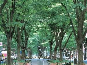 アパホテル<仙台勾当台公園>:定禅寺通り:ホテルより徒歩5分(写真提供:宮城県観光課)