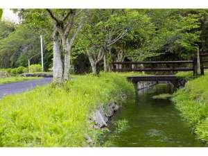 民宿青空:ジョギングやお散歩に最高の普現堂湧水源。都会の喧騒を忘れて・・・。