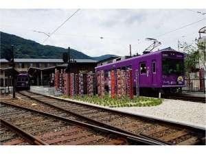 京宿 八重櫻