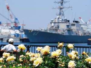 メルキュールホテル横須賀:【ヴェルニー公園】約2000本のバラが彩りを添える。毎年5月下旬と10月中旬にローズフェスタを開催します。
