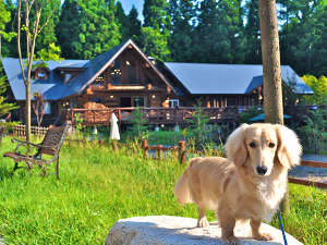 愛犬と泊まれる フェニックスウィング白馬の写真