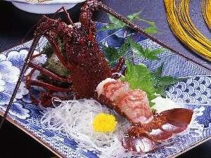 漁師料理と温泉の宿 浜栄:天然地物の伊勢海老お造り、身がプリプリ、これから旬ですよ。