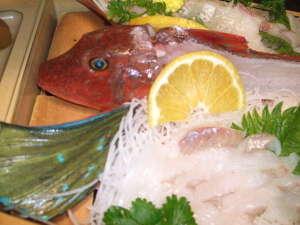 漁師料理と温泉の宿 浜栄:ホウボウお造り
