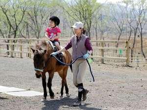 高室山温泉 パノラマホテル(旧:小さなサンタフェまきばの宿):併設する牧場での引き馬体験は旅先の良い思い出に♪温厚でやさしい性格の与那国馬は小さなお子様でも安心