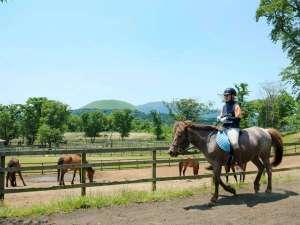 高室山温泉 パノラマホテル(旧:小さなサンタフェまきばの宿):自然豊かな山頂でパノラマライドを楽しんで♪乗馬経験者も満足の騎乗メニューもあり。(別料金・ご予約制)