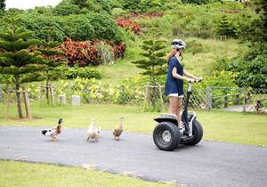 ウェルネスヴィラブリッサ:体重の移動だけで簡単に操作ができるセグウェイ!宮古島で体験できるのはここだけ!