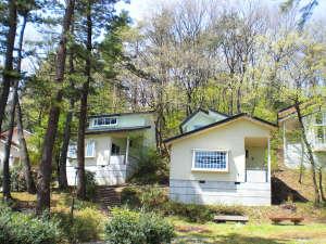 南砺市桜ヶ池自然活用施設自遊の森