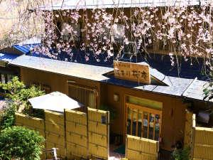 美吉野桜庵の写真