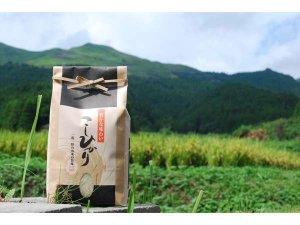 【竹の倉米】丹精込めて育てる、自家製コシヒカリは逸品