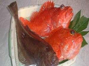 ペンションシロギス:その日に取れたお魚を使ったお料理が楽しめる。