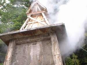 懐かしの自然湯 熱川温泉 一柳閣:湯量豊富な伊豆熱川。源泉からは100℃の迫力の湯けむりがあがります。