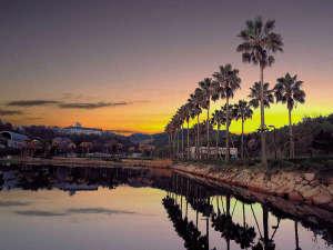グリーンピアせとうち:海と木々が織りなすノスタルジックな風景