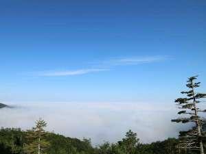 十勝岳温泉 湯元 凌雲閣:北海道で一番の高所にある温泉宿のため富良野盆地を包む雲海の絶景が観れることも