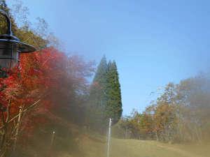 湯の森くす:山ぶどう/コテージからの眺め:自然豊かな景色が広がります。
