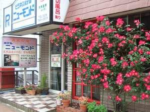 温泉の宿 ホテルニューモンド:バラと季節のお花がお客様をお待ちしています。夜は看板が点灯します。