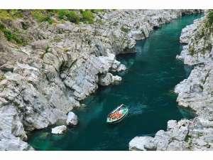 峡谷の湯宿 大歩危峡まんなか:大歩危遊覧船