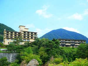 せせらぎと竹の香りの隠れ宿 鬼怒川温泉 旅館 若竹の庄の写真