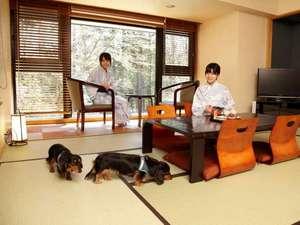 ペットと一緒に泊まれる宿 仙石高原 大箱根 一の湯:スーペリア和洋室例