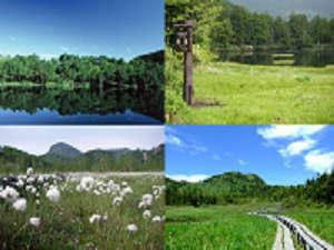 志賀の湯ホテル:新緑の春、清涼の夏志賀高原