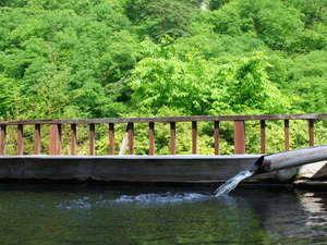 老神温泉 もうひとつのふる里 山口屋:美しい新緑を眺めながら露天風呂でのんびり♪