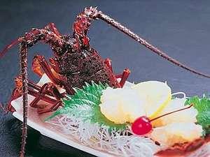 料理旅館 伝洋:伊勢海老お造り