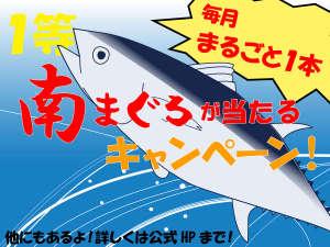 ホテルnanvan焼津:マグロが当たるキャンペーン開催6/1~8/31毎月南マグロが1本当たる!!