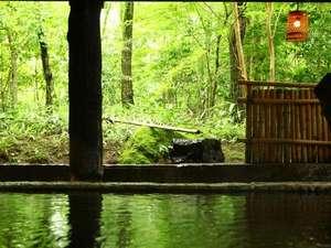奥阿蘇の宿 やまなみ:【風呂】緑と静寂に包まれてゆっくりと癒しの時間をお過ごしください/例
