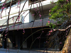 延楽 清流沿いの絶景露天と旬菜会席が評判の宿の写真