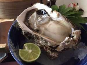 北山鉱泉 子宝の湯宿 元祖仁右衛門家:岩牡蠣のお造り!ぷりぷり!!