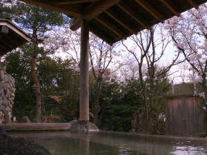 金沢辰口温泉たがわ龍泉閣 北陸最大級の星空露天:田んぼの湯(春)露天風呂からお花見ができます♪