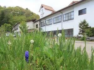海ノ口温泉 湯元ホテル 和泉館の写真