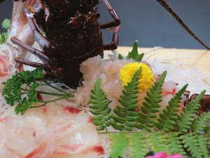 料理旅館 季(とき)と海の恵み 紅葉屋:ぷりっぷりの伊勢海老♪