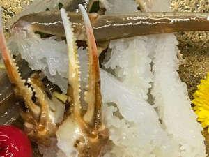 いまい旅館:【カニ刺し】花咲きの刺身は活カニの証。越前ガニの美味しい冬に咲く花