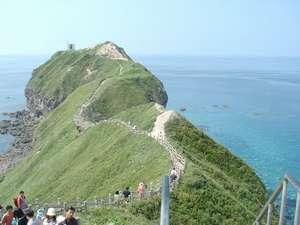 リフォレ積丹ユースホステル:積丹を代表する景勝地の神威岬。恐竜の首の上を歩くように続く遊歩道が人気です
