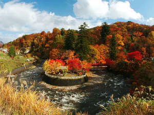 飯塚旅舘:*紅葉名所「中野もみじ山」…赤や黄に色づく山々。自然の美しさを体感できます!