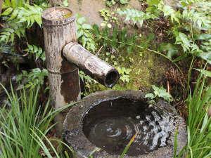 湯布院旅館のぎく:【景観】庭