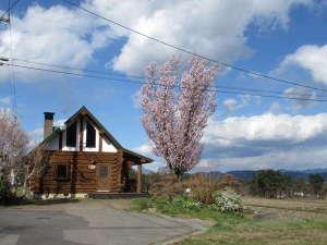 カナディアンログコテージTAKITARO:満開のオオヤマザクラ その眼下には田舎の原風景が広がる