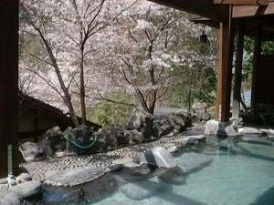 夢の国星の国みるき~すぱサンビレッヂ:【貸切露天風呂★たまゆらの湯】春には桜をご覧いただきながら、温泉にゆったり浸っていただけます♪