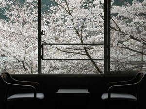 呂尚館客室からの桜景色