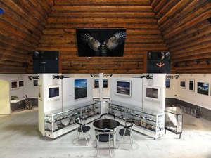 ウッディ・ライフ:アートステージピラミッド内 30点の四季の美瑛・富良野写真と貝殻の展示