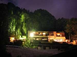 裏山の竹薮のライトアップも綺麗!