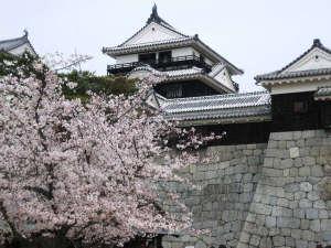 【松山城】「現存12天守」の一つ。松山市の中心部、勝山山頂にそびえ立つ広大な平山城(松山市)