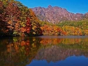 湯田中温泉 石庭露天風呂の宿 俵や:小さい秋 見つけた♪志賀の山々から見頃を迎え、すぐに里へと.. 色鮮やかな紅葉と味覚の季節に