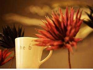 ザ・ビーお茶の水