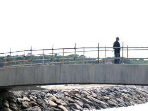 自然溢れるアートの離島 民宿 魚増